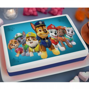 PAW Patrol Printed Cake 33lb