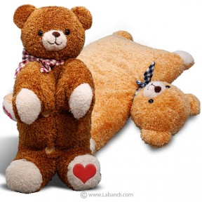 Foldable Teddy Pillow