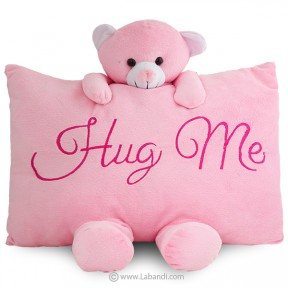 Hug Me Plush Pillow