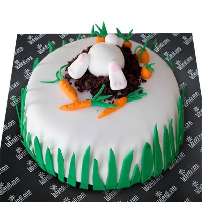 Garden Bunny Chocolate Cake