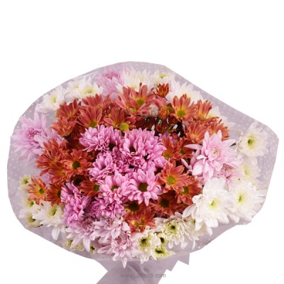 Assorted Chrysanthemum Bunch