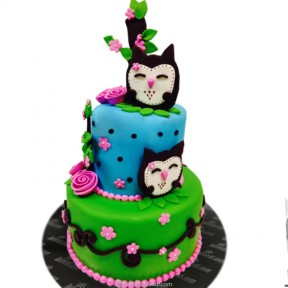Two Tier Owl Cake - 7.7lb