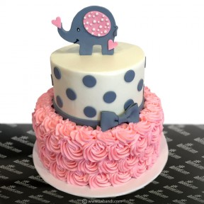 Baby Shower Cake (Pink) -...