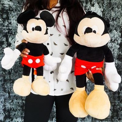 Mickey Mouse Twin