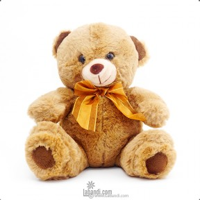 "Georgy Bear - 9"""