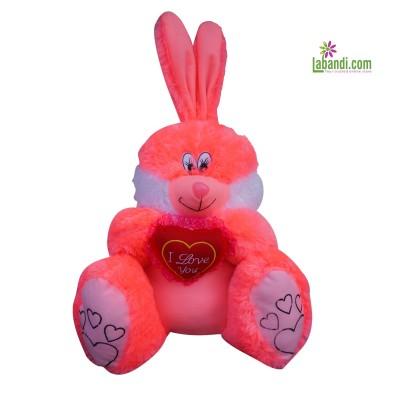 Pinky Rabbit