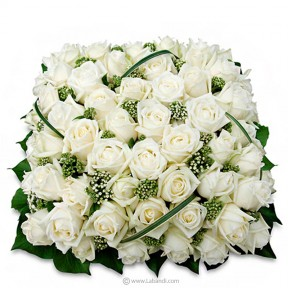 50 White Roses Coffin Wreath