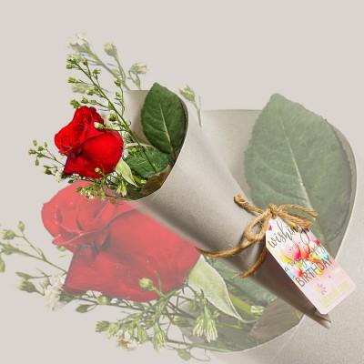 Love Me Modern Garden Rose