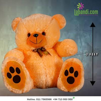 Lovely Peach Teddy