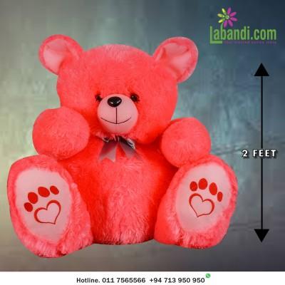 Hot Pinky Teddy